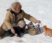 Как рыжий кот обвел моего товарища на зимней рыбалке